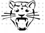 bb panther