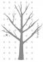 bb sternenbaum