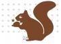 bb eichhörnchen